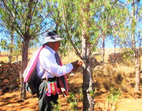 Stichting Samay - Bolivia